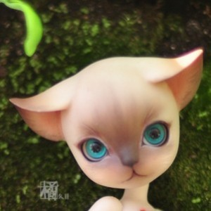 Luo's faceup