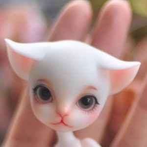 An An's faceup