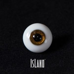 S.Amy's eye
