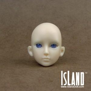 Wallis' head