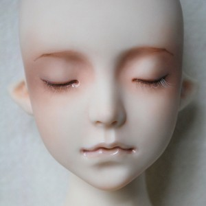 Dove's faceup